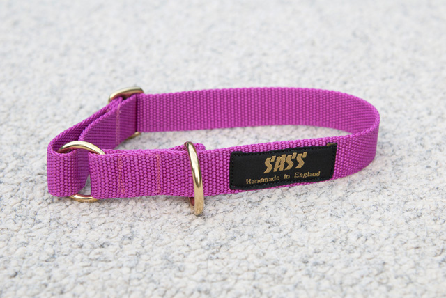 fuscia pink adjustable ring collar