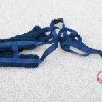 H back harness  - Blue